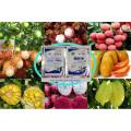 Aminoácido como fertilizante orgânico 100% solúvel em água