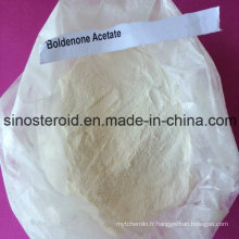 Bodybuilding Injection Steroid Bold 200 / Boldenone Acétate pour le traitement du cancer