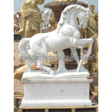Stone Marble Horse Animal Sculpture for Garden Statue (SY-B158)