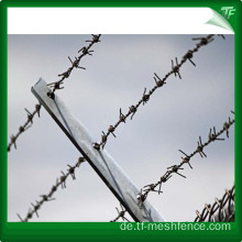 Feuerverzinkter Straight Razor Barbed Wire