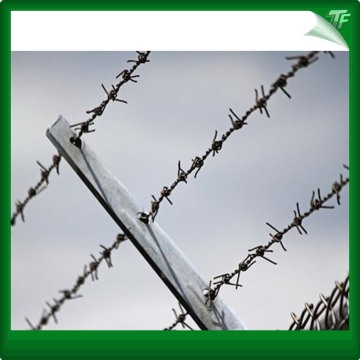 Whaterproof  razor type barbed wire