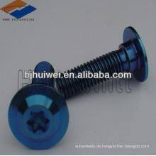 blau eloxierte Titanschraube mit Torxkopf