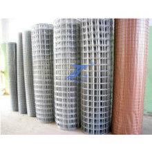 "1"" Aperture Galvanized Zinc Welded Building Wire Mesh (TS-WM21)"