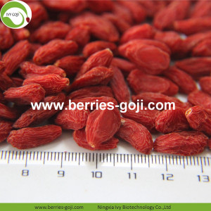 Hot Sale Super Dried Fruit Lose Weight Wolfberries
