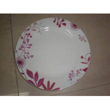 10.5 '' Colorful Plate