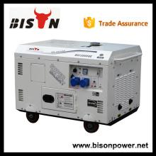 BISON Chine Zhejiang fabricant de porcelaine électrique 220v, générateur alternateur 220v, générateur diesel 13 kva