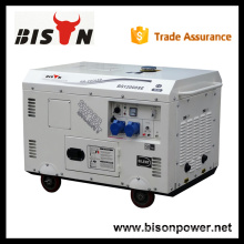 BISON China Zhejiang china generator electric 220v, alternator generator 220v, 13 kva diesel generator