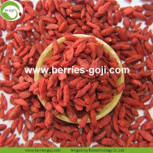 Good Quality Factory Supply Dryning Wolfberry yang terhormat