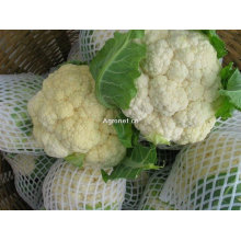 chinese frozen cauliflower