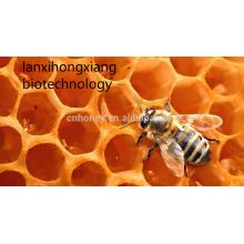 Buchweizen Honig