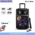 Popular recarregável Bluetooth Speaker Karaoke P151
