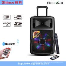 Haut-parleur d'amplificateur Prefessional de mini multimédia de Portable de 12 pouces Bluetooth mini