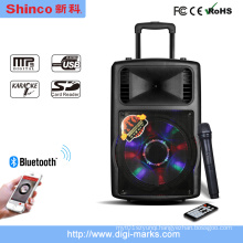 12 Inch Bluetooth Portable Mini Multimedia PA Prefessional Amplifier Speaker