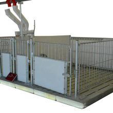 PVC panel around customized size piglet fattening for pig farm