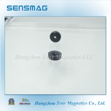 Magnetic Assembly NdFeB Magnet with Epoxy Coated