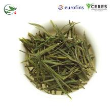 Chá Verde Orgânico