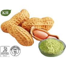 Luteolin, extrait de coquille de cacahuète, extrait de chrysanthème