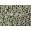 Nueva cosecha china seca lentejas verdes