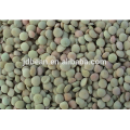 New Crop Chinese Dried Green Lentils