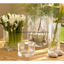 Square Transparent Decoration Glass Flower Vase