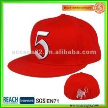 Оснащенная задняя шляпа SN-0091