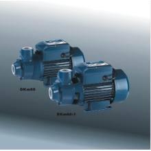 Micro Vortex Pump (DKm 60-1)