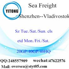 Shenzhen cảng biển vận chuyển hàng hóa vận chuyển đến Vladivostok
