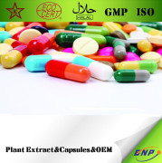 Plant Extract Capsules & OEM Contract Manufacturing