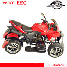 Новый дизайн 250cc Quad