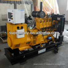 Générateur de biogaz pour contrôleur woodward