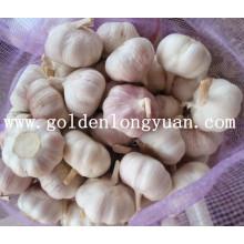 Jinxiang Fábrica de Alimentação Fresh New Crop Alho