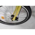 48V bequemes elektrisches Fahrrad fahren madin in China / elektrisches Strandkreuzerfahrrad
