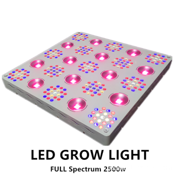 Paten Dimmable 2500W LED Grow Light