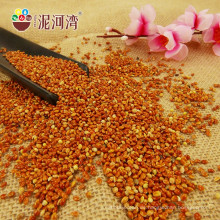 Chinesische rote Broomcorn-Hirse mit hoher Qualität