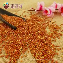 Mijo rojo chino de Broomcorn con alta calidad