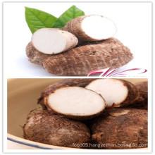 2015 Fresh Taro From China Shandong Boren