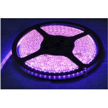 60SMD3528 4,8 Вт / м Розовая светодиодная лента