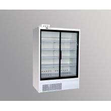 Réfrigérateur congélateur commercial congélateur vertical