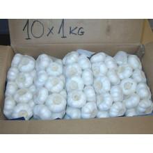 Ajo blanco puro de calidad superior fresco para el mercado europeo