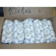 Fresh Top Quality Pure White Garlic for European Market