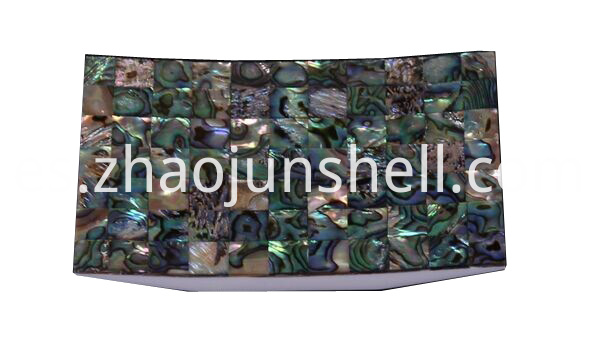 paua shell towel tray