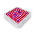 Full Spectrum LED Grow Light Indoor 300W
