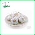 Ajo blanco normal / nuevo ajo de cultivo / Ajo de China
