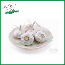 Normaler weißer Knoblauch / neuer Ernteknoblauch / China Knoblauch
