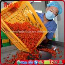 Dry goji berries benefits goji berries benefits youtube goji berries benefits in spanish