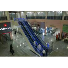 Крытый эскалатор ПЛК преобразователь с конкурентоспособной ценой