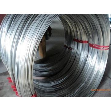 Stainless Steel fine Wire