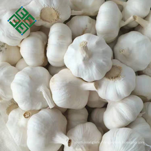 2018 new crop fresh natural garlic pure white garlic