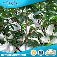 Vegetal de fruto não tecido do produto popular protege as tampas agrícolas