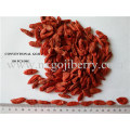 Dried Goji Berry Fruit Supplier